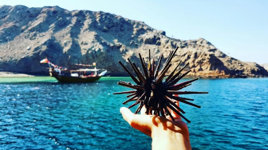 Oman et sonsultanat
